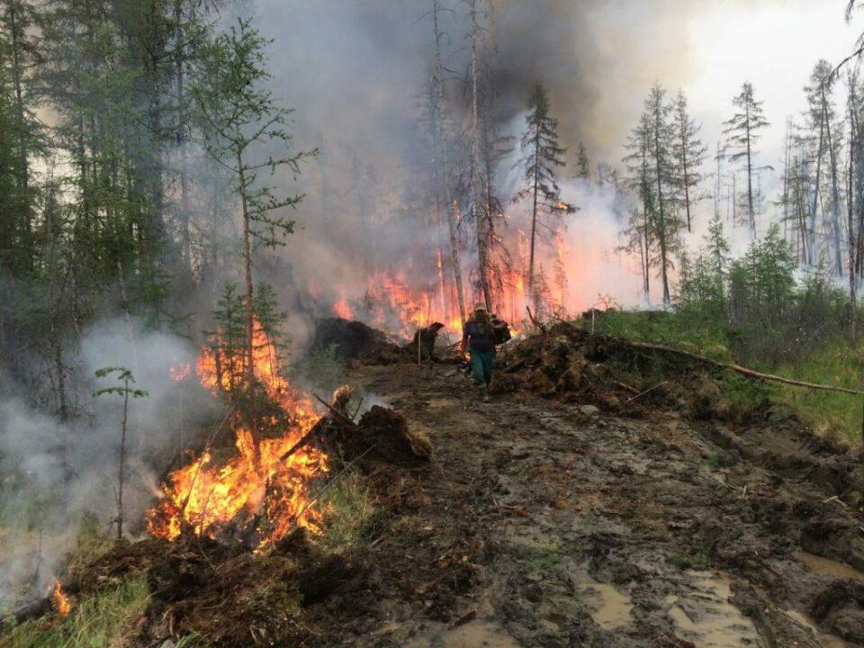 В этом году в Якутии прогнозируется высокий класс пожарной опасности