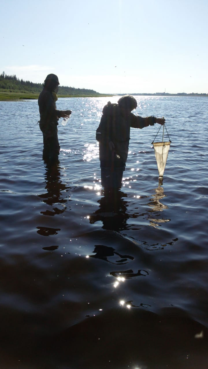 В Якутии проведут научное исследование здоровья населения и экологии Вилюйской группы улусов