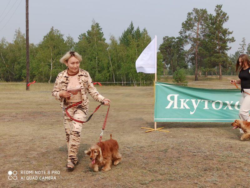 В Якутии впервые провели комплексное кинологическое мероприятие для подружейных собак