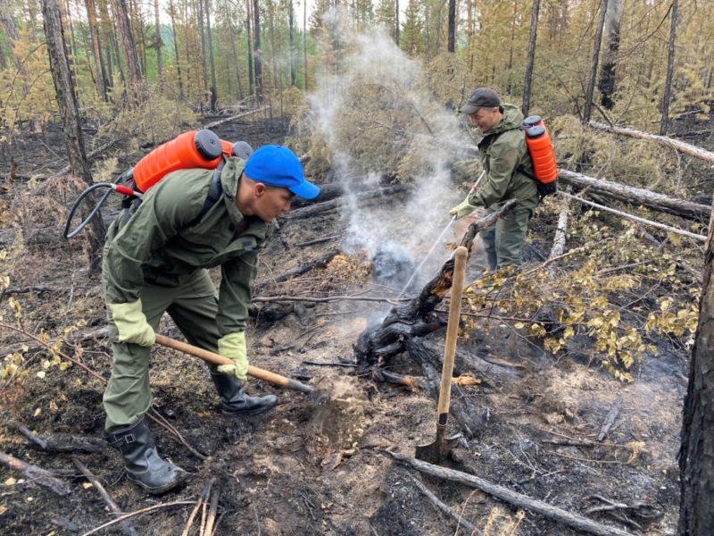 В Якутии принимаются меры по тушению 31 лесного пожара