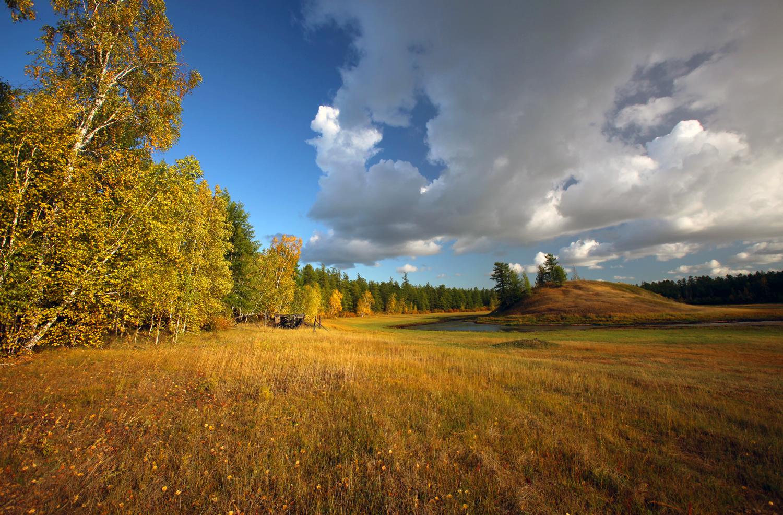 ВЯкутии подано 2,5 тыс. заявок надальневосточный гектар