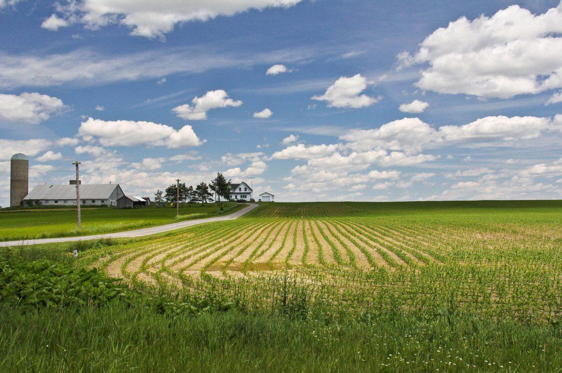 На какой срок можно получить землю в безвозмездное пользование