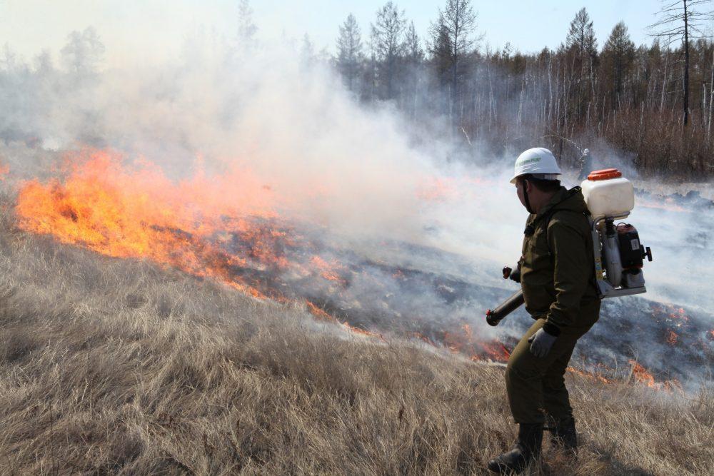 «Надеемся, что такая ситуация никогда не повторится». Огнеборцы о тушении лесных пожаров в Якутии