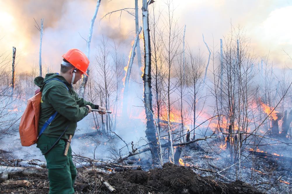 На далеком Востоке 62 пожара охватили 6,8 тыс. гектаров леса