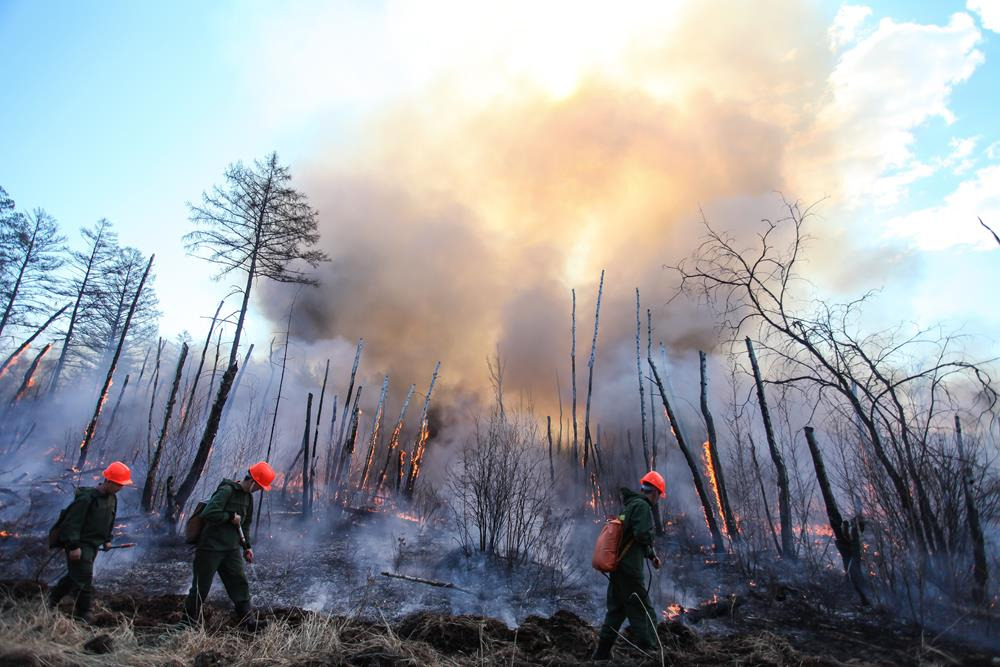ВВилюйском районе действуют восемь больших лесных пожаров