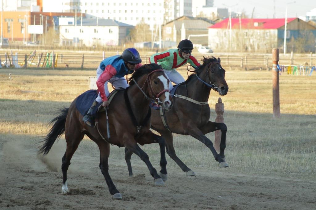 В Якутске пройдут конные скачки на призы председателя правительства