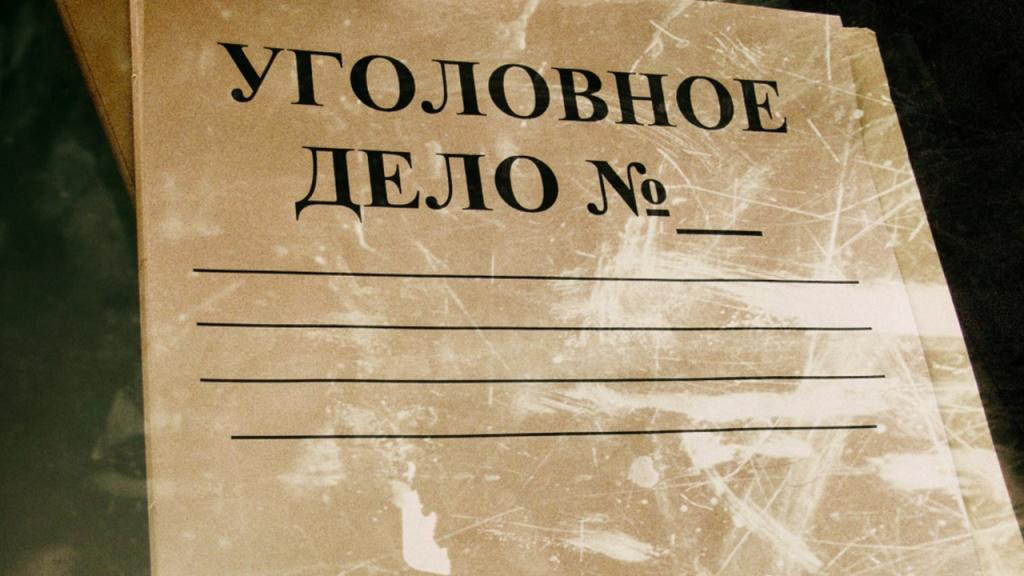 ВИДЕО. В Якутии возбудили уголовное дело. Мужчинам грозит до 3 лет лишения свободы за жестокое обращение с диким животным