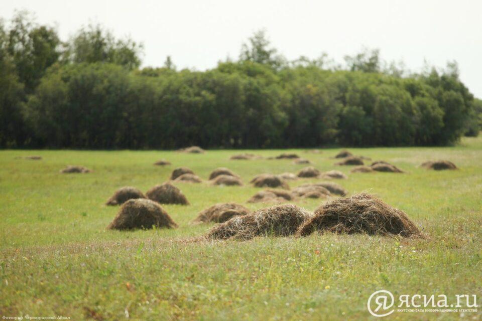 Вилюйский район Якутии выполнил план по заготовке сена