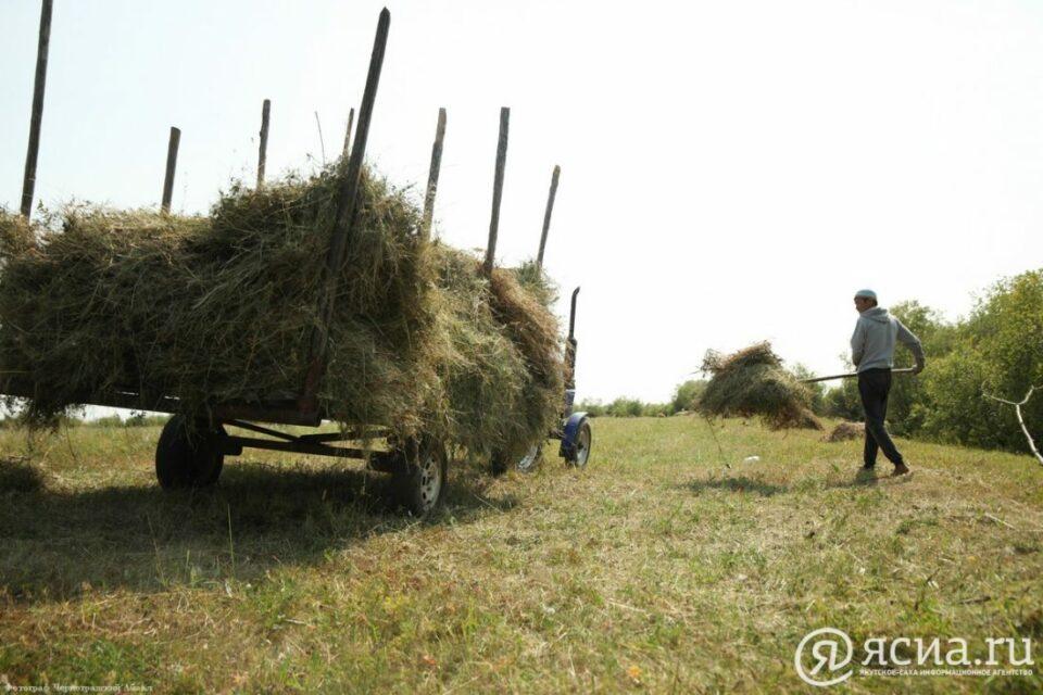 В Якутии мобильным бригадам и хозяйствам возместят затраты на перевозку сена из других районов