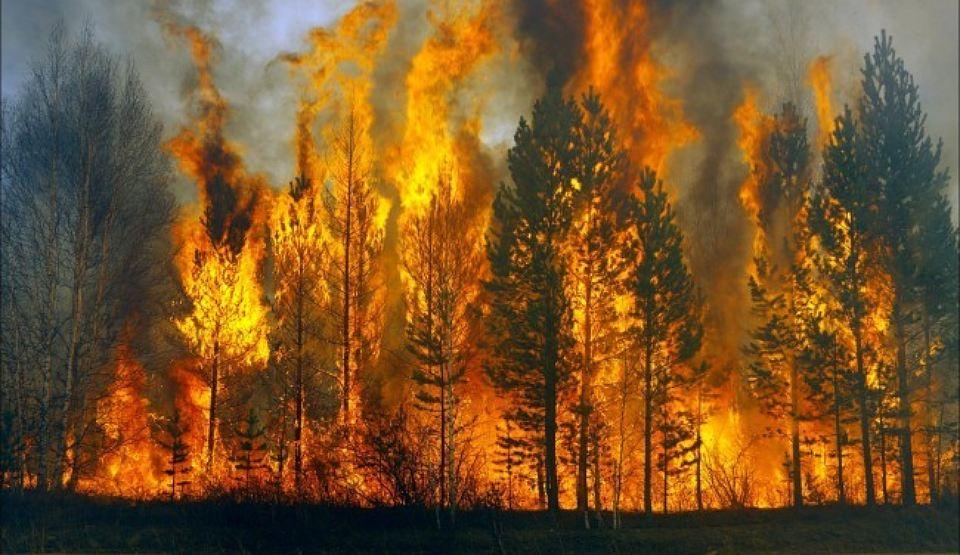 Лесные пожары вИркутской области иБурятии гасят  искусственные дожди