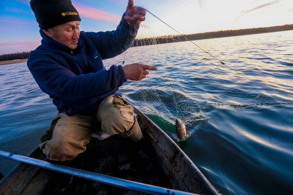рыбалка николаев карась
