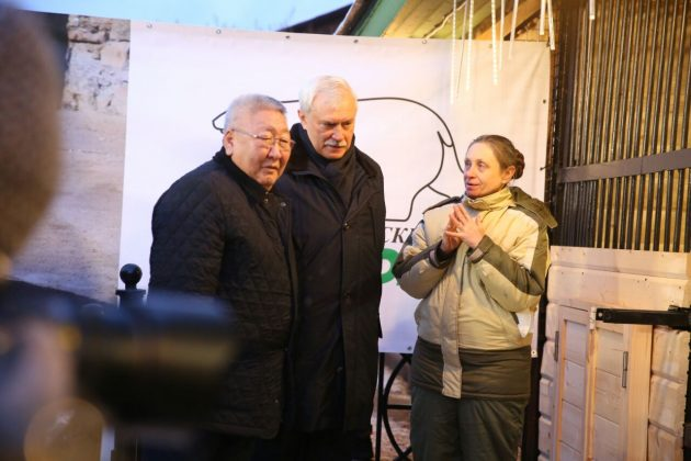 10-630x420 Внучка вернулась к бабушке: Хаарчаану официально передали Ленинградскому зоопарку