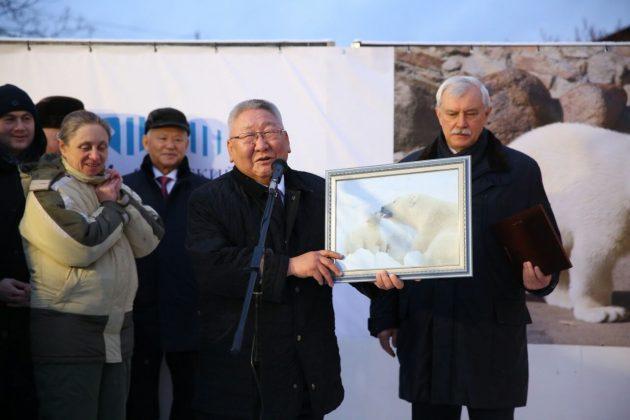 11-630x420 Внучка вернулась к бабушке: Хаарчаану официально передали Ленинградскому зоопарку
