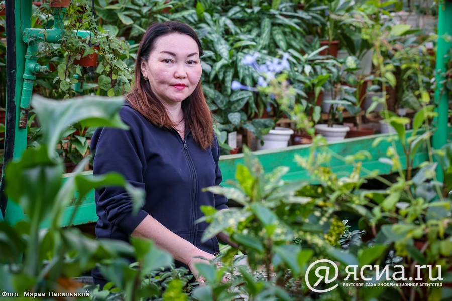 Джунгли в Якутии: Северный ботанический сад собрал богатую коллекцию тропических растений