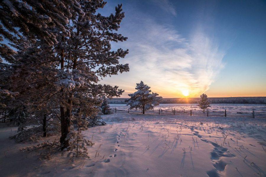 В Якутии стартовала информационная декада «Землевладелец»
