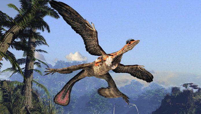 1517988498-696x395 Маленькие, беззубые, мозговитые. Почему птицы пережили динозавров