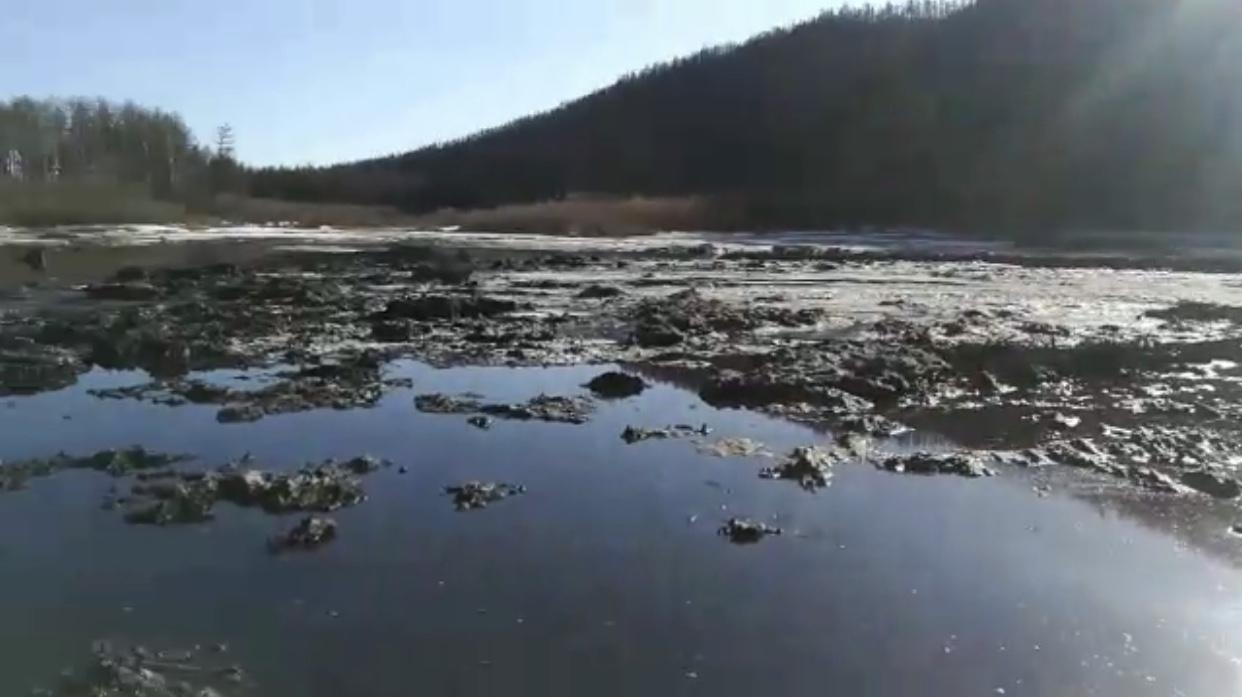 Сталик Дерягин: Мы обследуем место загрязнения на реке Чульман