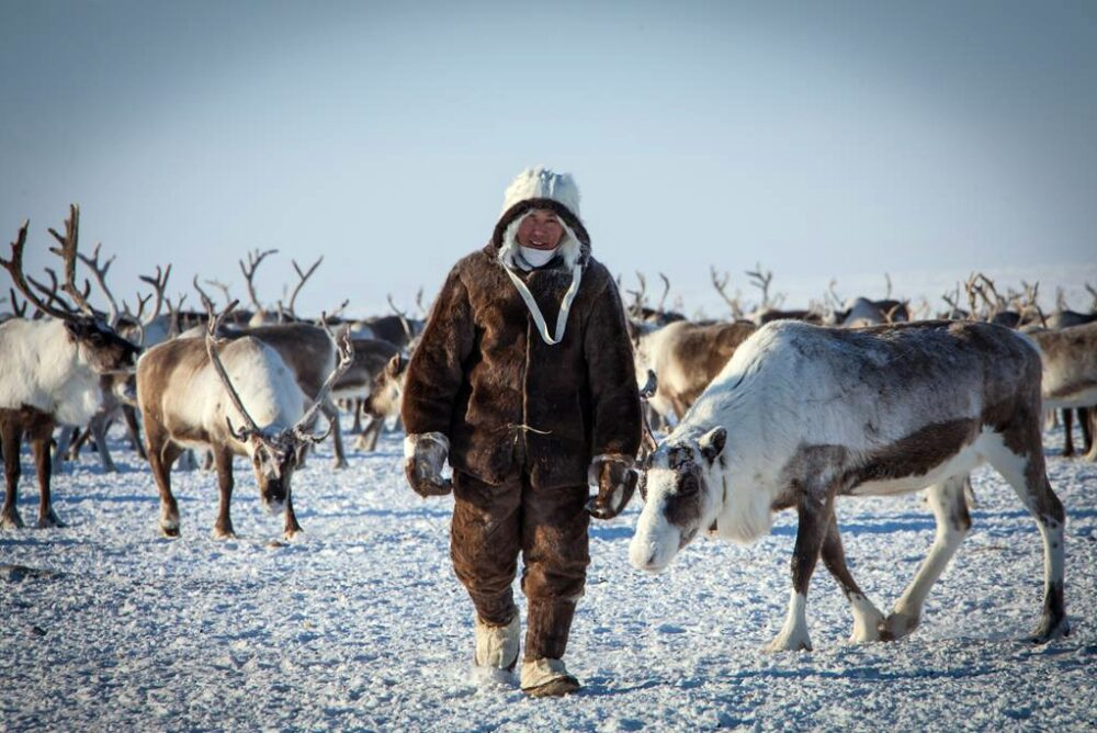 Задержанные оленеводы Усть-Янского района в ближайшие дни отправятся домой
