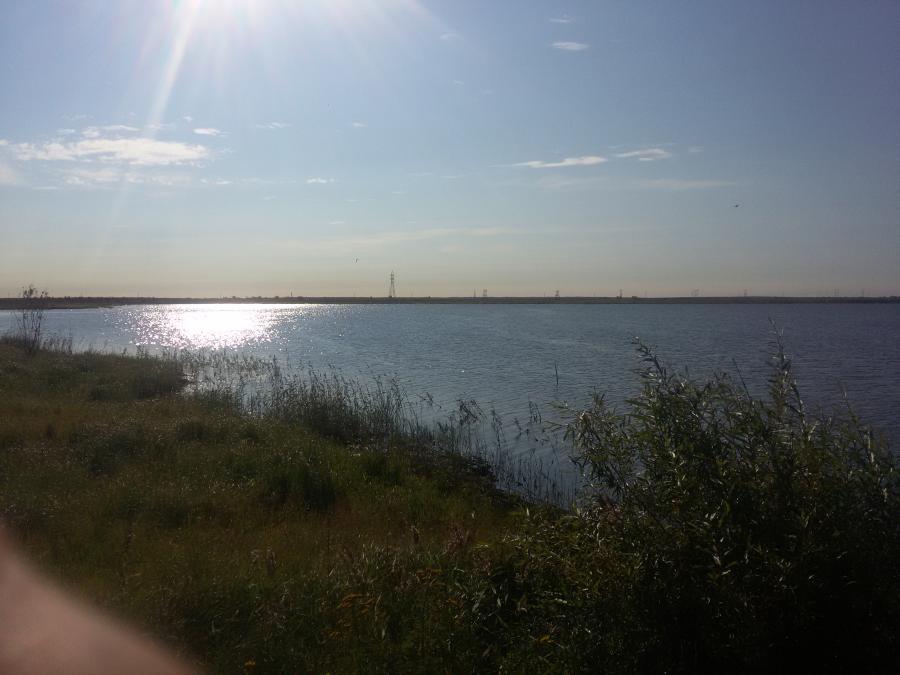 Якутские ученые: Плавающая в Теплом озере форель – это реально