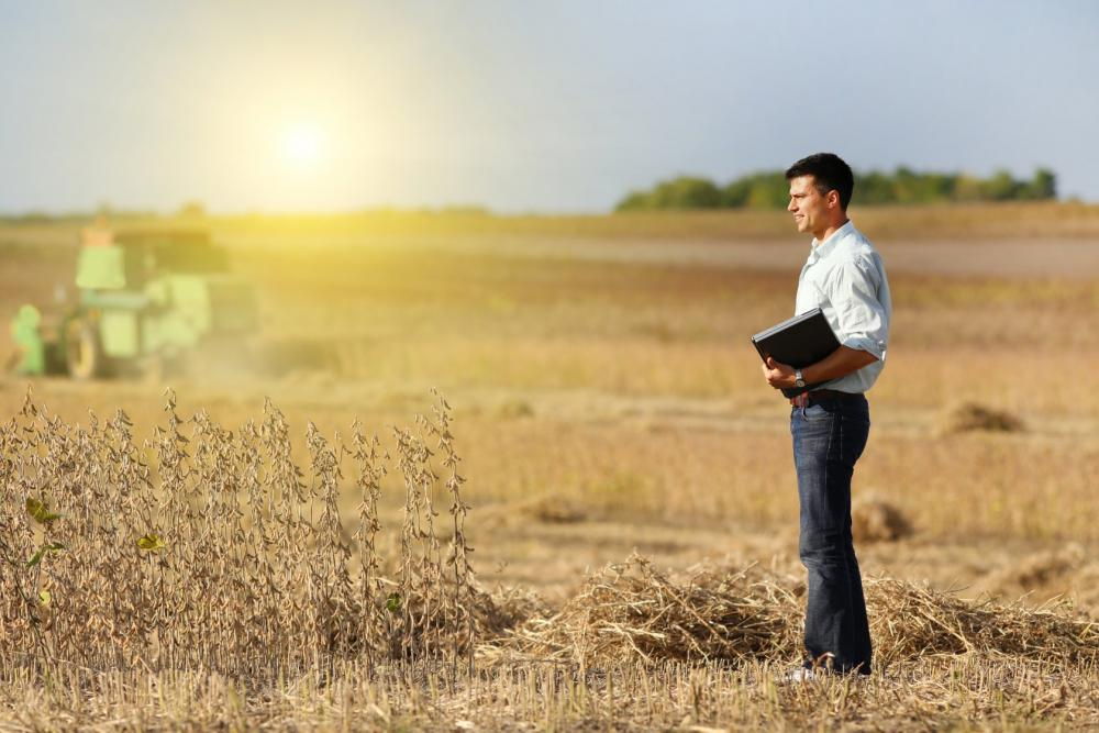 Дополнительный «Дальневосточный гектар» смогут получить граждане в случае успешного освоения земли