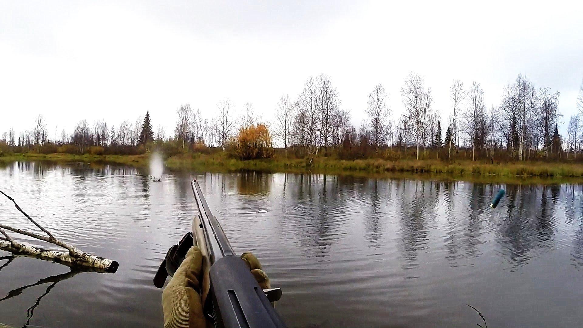 охота осенью