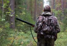 1 августа начинается прием заявлений на выдачу лицензий на охоту