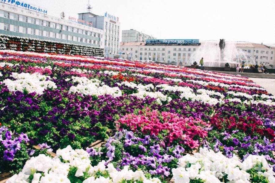 Приглашаем на ярмарку цветов