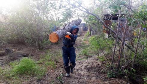 ПОЛНЫМ ХОДОМ: Село Аргахтах восстанавливают после паводка