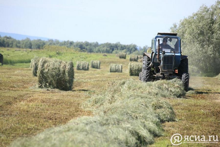 Перед районами Якутии при заготовке сена поставили задачу максимально использовать дальние угодья