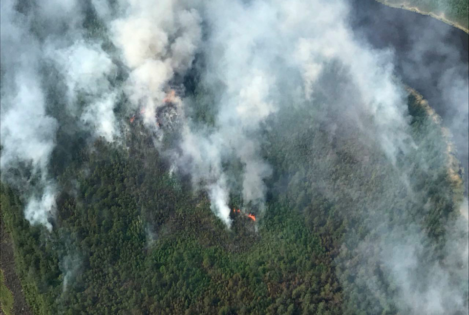 Рослесхоз предупредил о неготовности регионов к сезону лесных пожаров