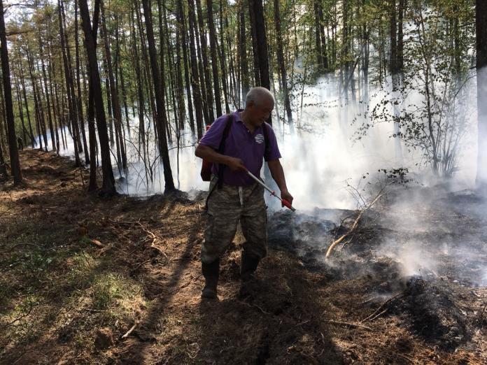 Четыре лесных пожара локализовали в Якутии за сутки