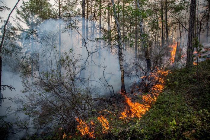 В Якутии ведутся работы по тушению двух лесных пожаров
