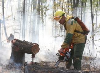 В Якутии действуют пять лесных пожаров