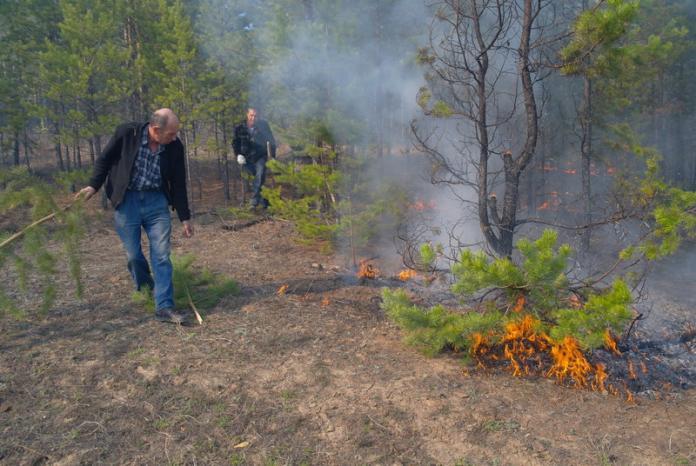 В Верхоянском районе Якутии локализован пожар на площади 42 гектара