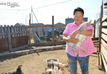В Батагай-Алыте жительница разводит необычных домашних птиц