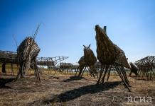 «Священный табун мифических лошадей»: Арт-объект во Владимировке ждет помощников