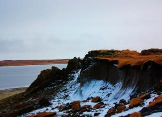 В Якутии на острове Котельный нашли останки туши мамонта