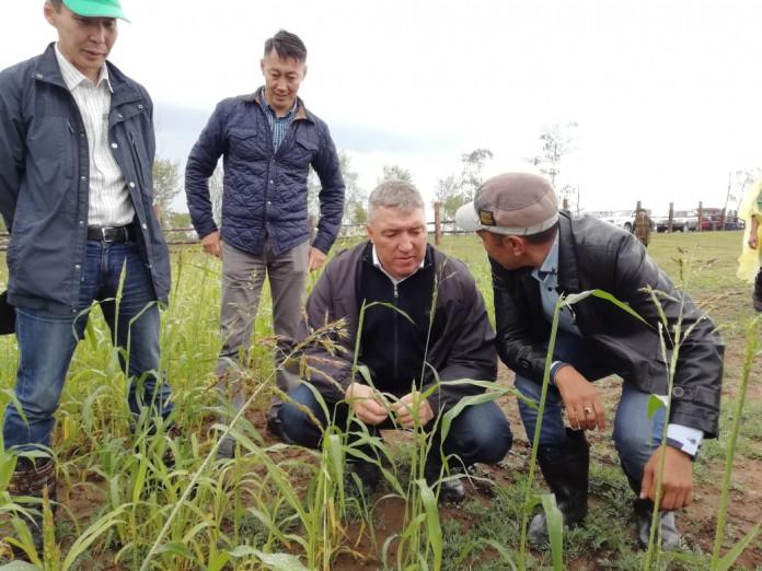 Денис Белозеров заявил о разработке новых подходов в сельском хозяйстве