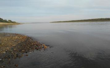 Врио главы Якутии Айсен Николаев совершил облет загрязненных рек с министром экологии региона