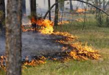 В Якутии лесной пожар тушат на территории Намского района