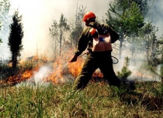 В Якутии тушат лесные пожары в Горном и Намском районах