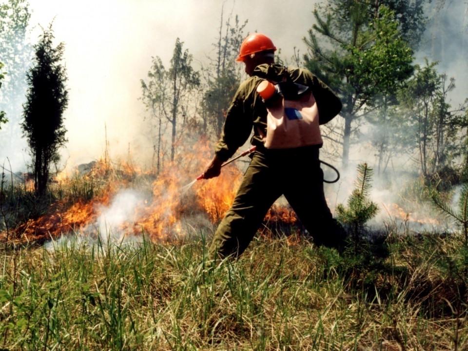 На 29 июля в Якутии тушат 25 пожаров