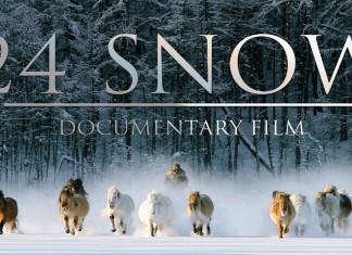 С 6 сентября в Якутске начнутся Международные дни документального кино