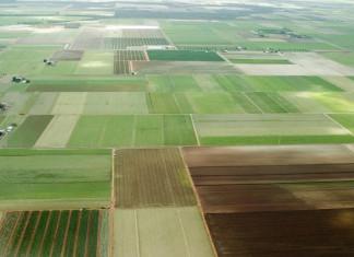 Утверждена форма декларации об использовании «дальневосточного гектара»