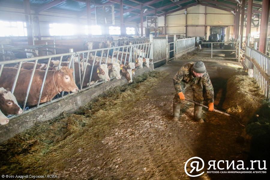 Поддержка фермеров по линии госпрограмм в Якутии продолжится