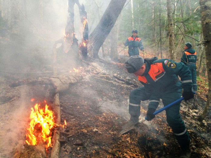 Количество лесных пожаров в Якутии сократилось до десяти