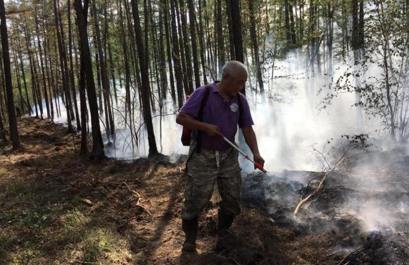 В шести районах Якутии закрыт пожароопасный сезон