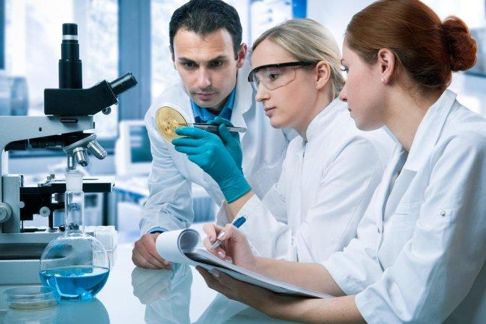 Дальневосточные молодые ученые смогут получать гранты до 2 млн рублей