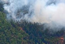 20 патрульных групп контролируют лесопожарную обстановку в Якутии