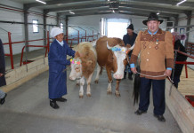 В Мегино-Кангаласском улусе открыли животноводческий комплекс